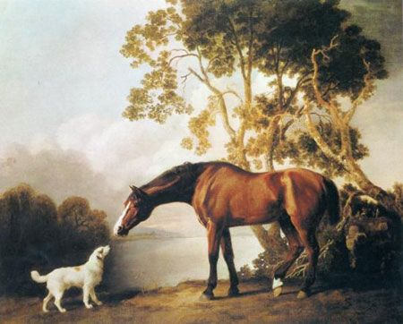 Horse and dog friends Canvas Wall Art Picture Print