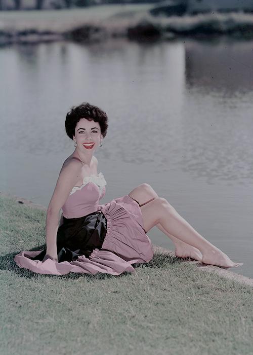 La Vie En Rose Elizabeth Taylor Hollywood Hollywood Icons