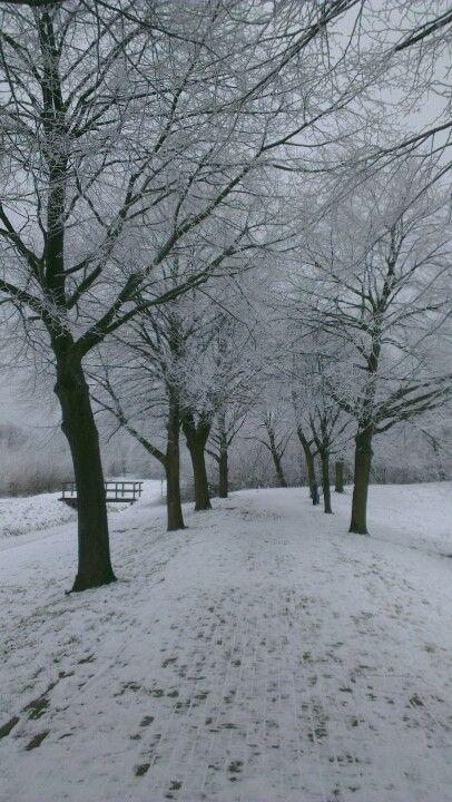 I like the snow #winter is coming