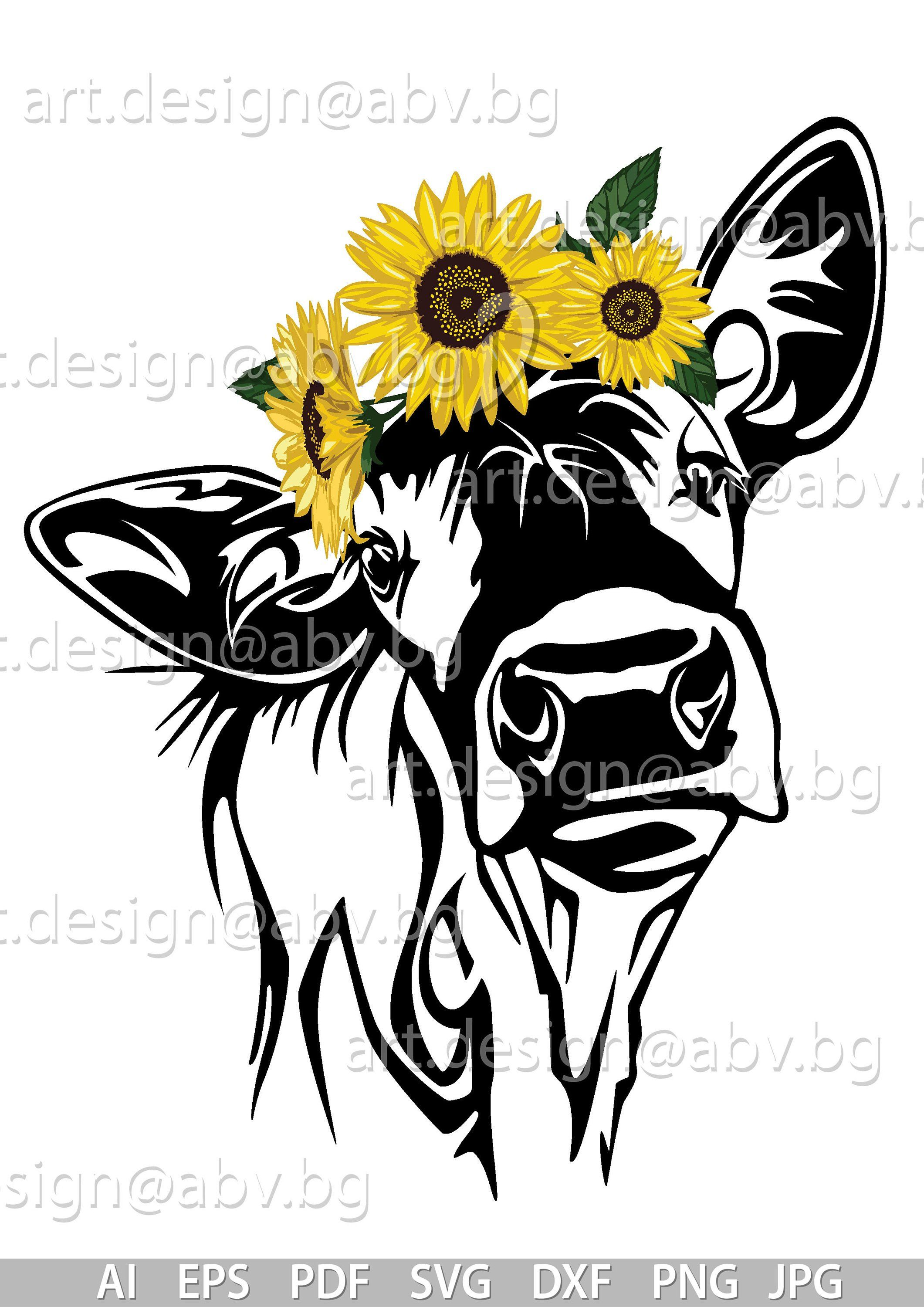 Vector COW with sunflowers, heifer, calf, head, AI, PNG