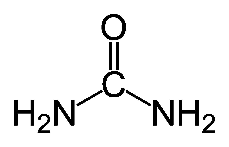 Hydrogen peroxide urea wikipedia dental pages pinterest hydrogen peroxide urtaz Images