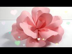 Diy how to make a paper flower backdrop rose como hacer un mural diy how to make a paper flower backdrop rose como hacer un mural mightylinksfo