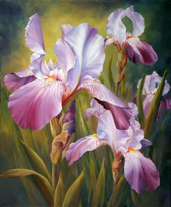 fleurs d 39 hiris iris une fleur de saison fleurs pinterest fleurs de saison saisons et fleur. Black Bedroom Furniture Sets. Home Design Ideas