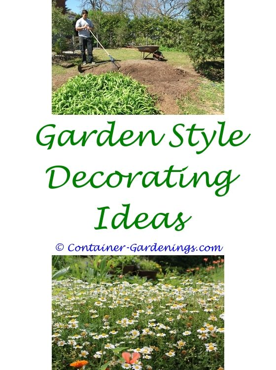 Easy Container Gardening | Container gardening, Terrace garden ... on easy woodworking ideas, easy recycling ideas, easy topiary ideas, easy food ideas, easy container plant ideas, easy christmas ideas, easy permaculture ideas, flowers for flower pots ideas, easy xeriscaping ideas, easy sewing ideas, easy composting ideas, easy spring ideas, easy fall ideas, easy entertaining ideas, easy travel ideas, easy diy ideas, easy container flower gardening, easy landscaping ideas, easy garden, easy flower gardening ideas,