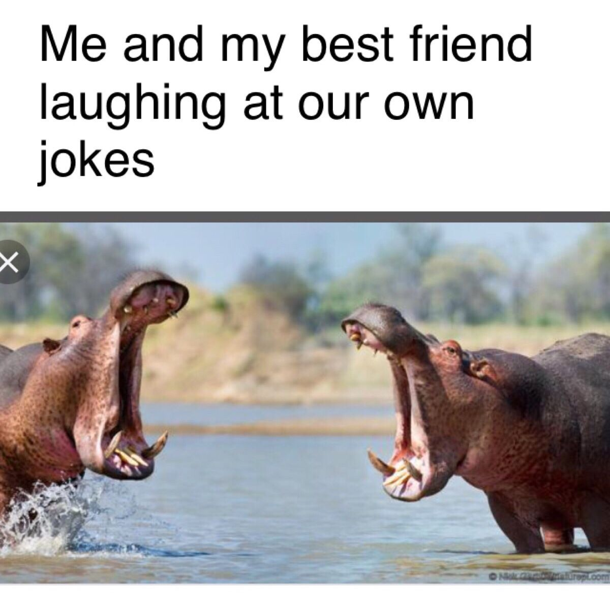 Me And My Best Friend Be Like Funny Friend Memes Funny Best Friend Memes Friendship Memes