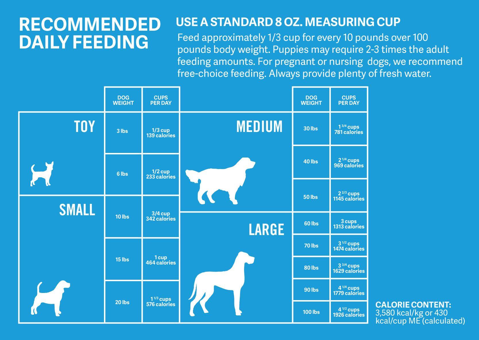 Dog food measurements puppy feeding schedule dog
