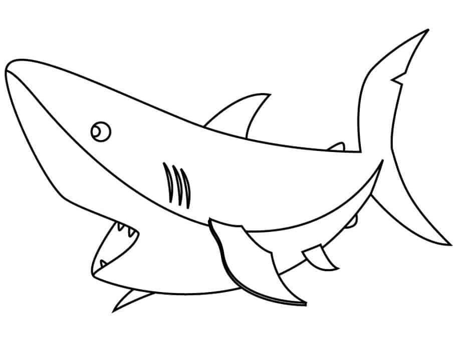 Free Printable Great White Shark Coloring Pages In 2020 Shark Coloring Pages Animal Coloring Pages Sharks Scary