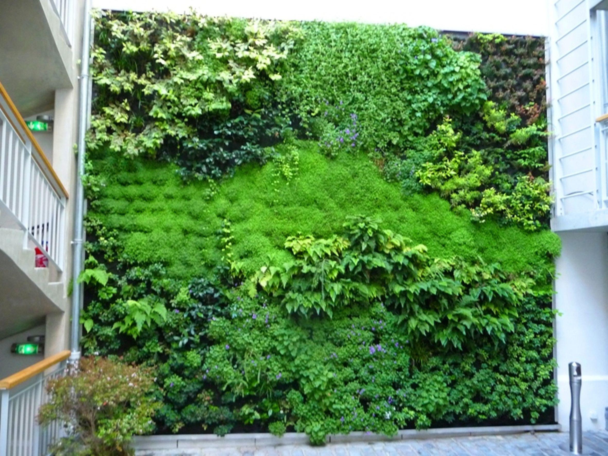mur v g tal int rieur ecodesign pinterest green. Black Bedroom Furniture Sets. Home Design Ideas