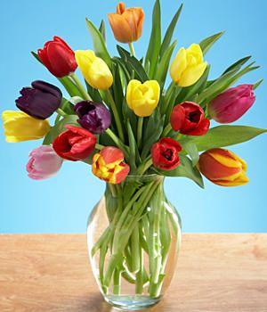 My Favorite Spring Flower Tulips Flowers Beautiful Flower Arrangements Beautiful Flowers