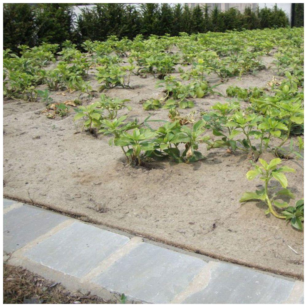 Paillage Biodegradable Jute Sisal 1000gr M2 Rouleau De 25m En 2020 Desherbage Sisal
