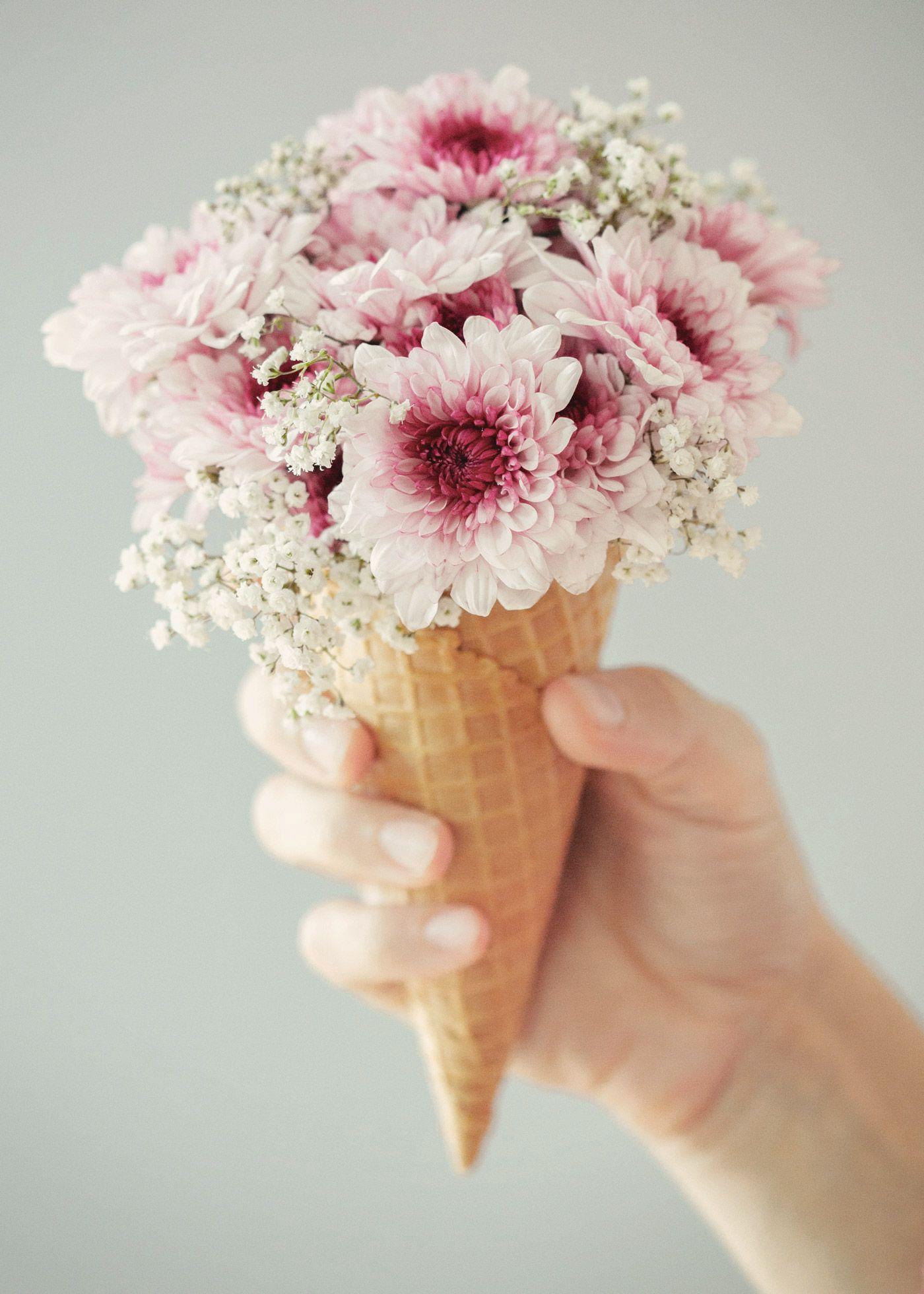 Post1 Jpg 1 400 1 960 Pixels Flower Cones Flower Aesthetic Flowers