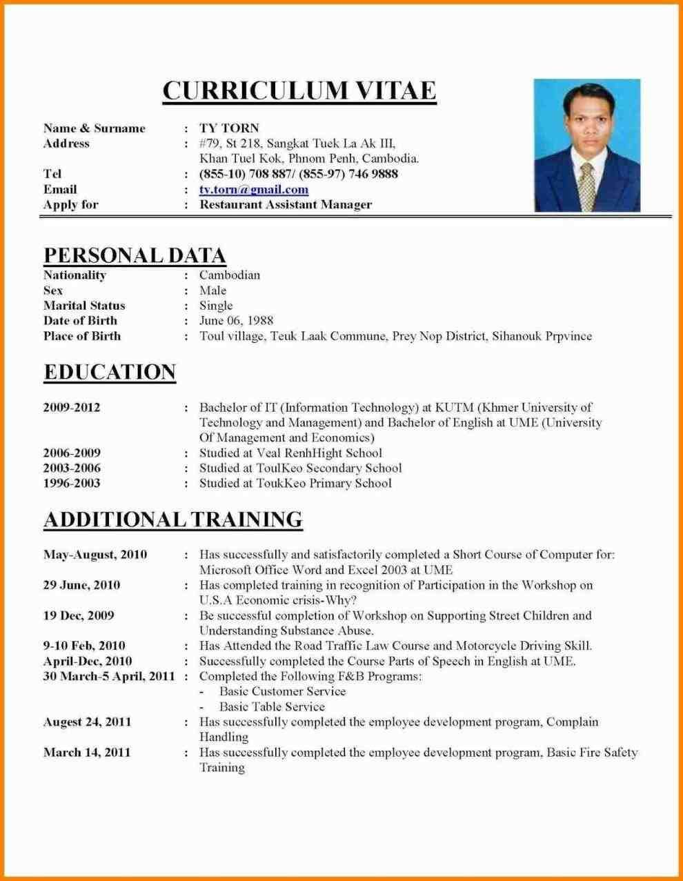 perfect cv template pdf