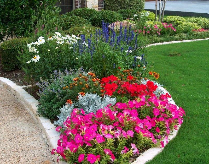 English Cottage Flower Bed With Petunias Salvia Daisy And Chopped Stone Border Landscaping With Rocks Trees To Plant Flower Beds