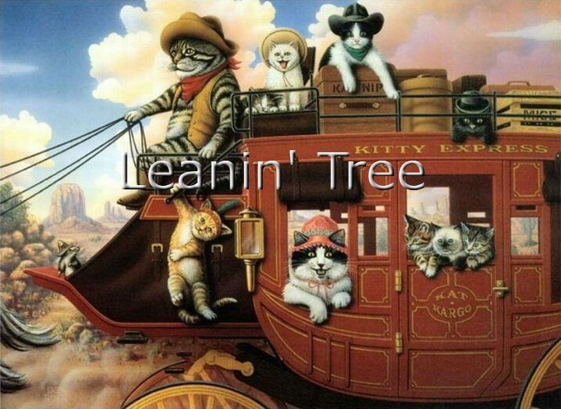 Leanin tree kitty express birthday card birthday cards