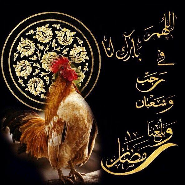 اللهم باركنا في رجب وشعبان وبلغنا رمضان Islamic Art Islam Ramadan