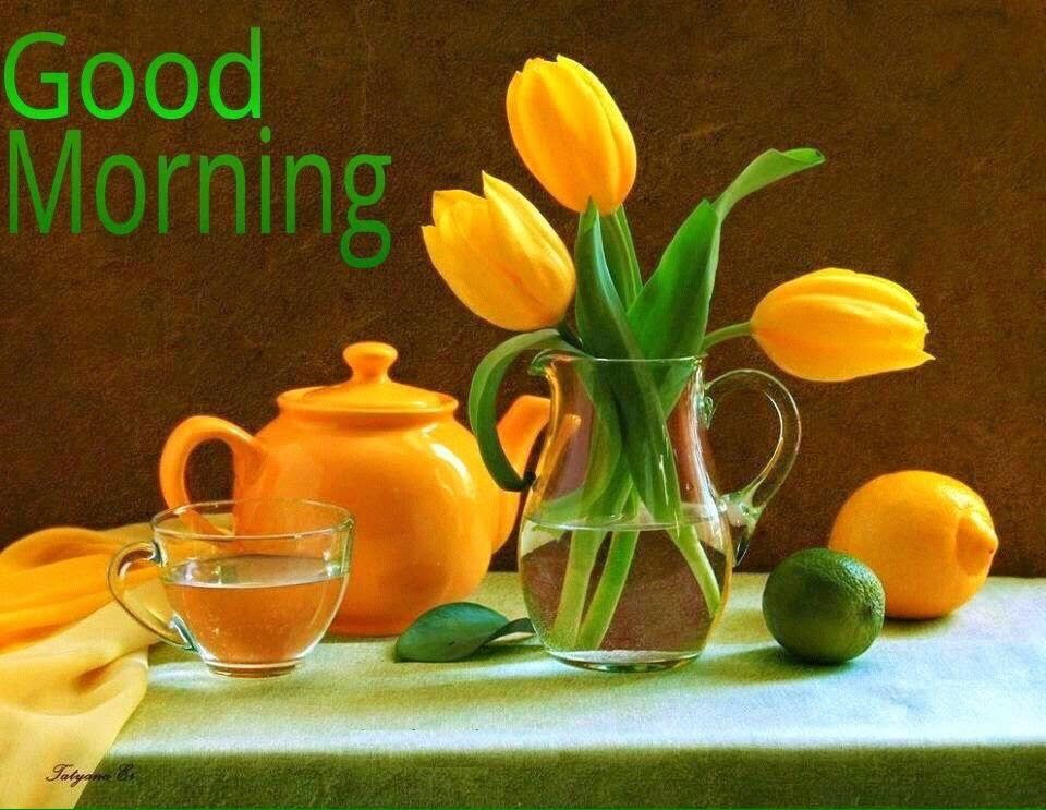 Best good morning images and messages for whatsapp