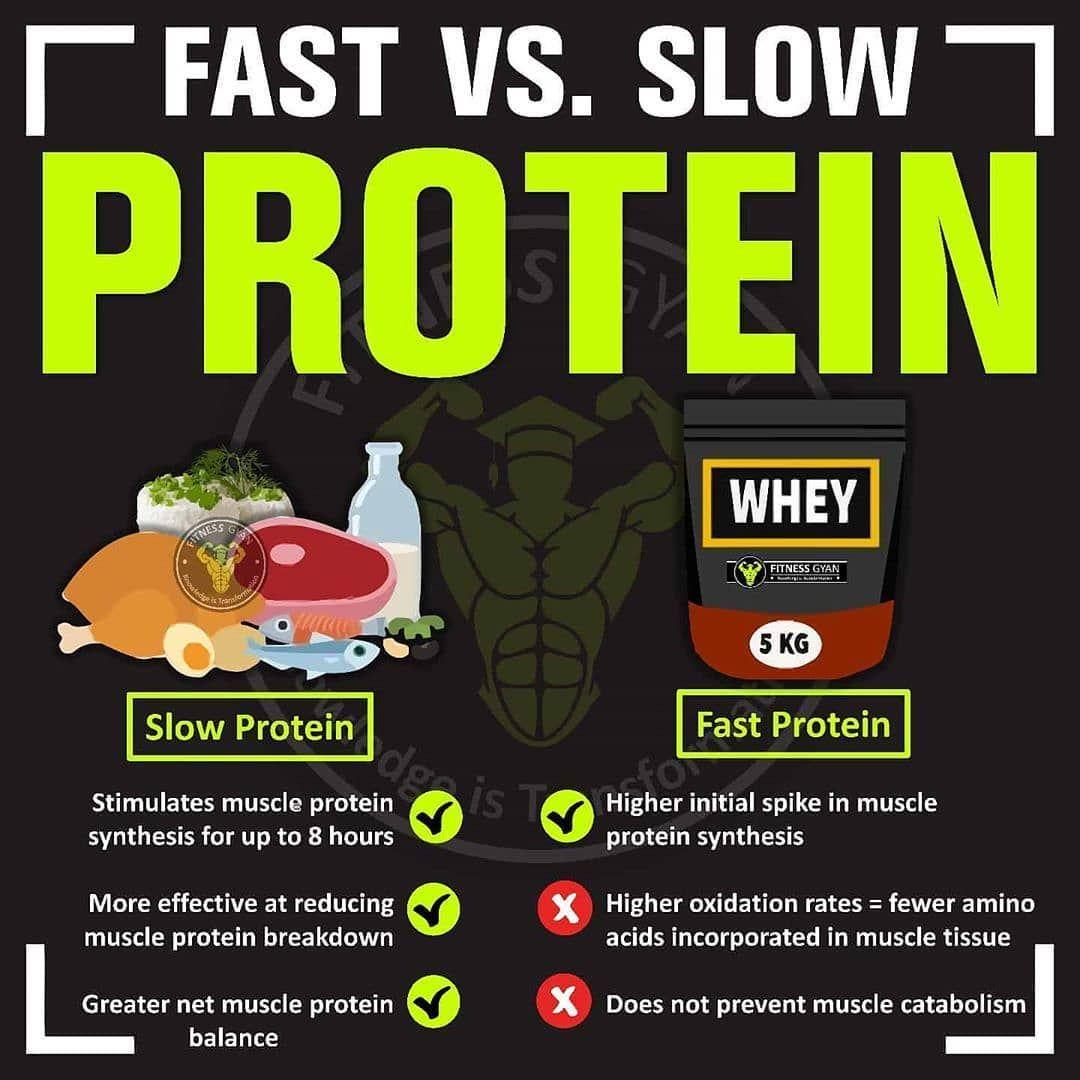 Fast Vs Slow Protein En Avec Images