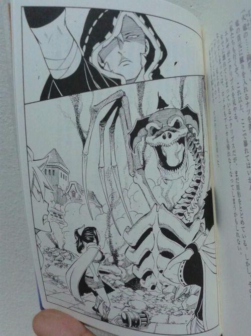 Trouble Twins Fairy Tail Light Novel 3 Fairy Tail Light Novel