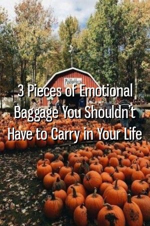 Relationstreets 3 Pieces of Emotional Baggage You Shouldnt Have to Carry in Your Life Relationstreets 3 Pieces of Emotional Baggage You Shouldnt Have to Carry in Your Lif...