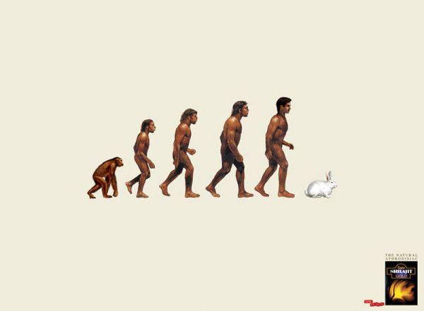 #MidnightAd Shilajit aphrodisiac - The evolution of man (Agency: Mudra)