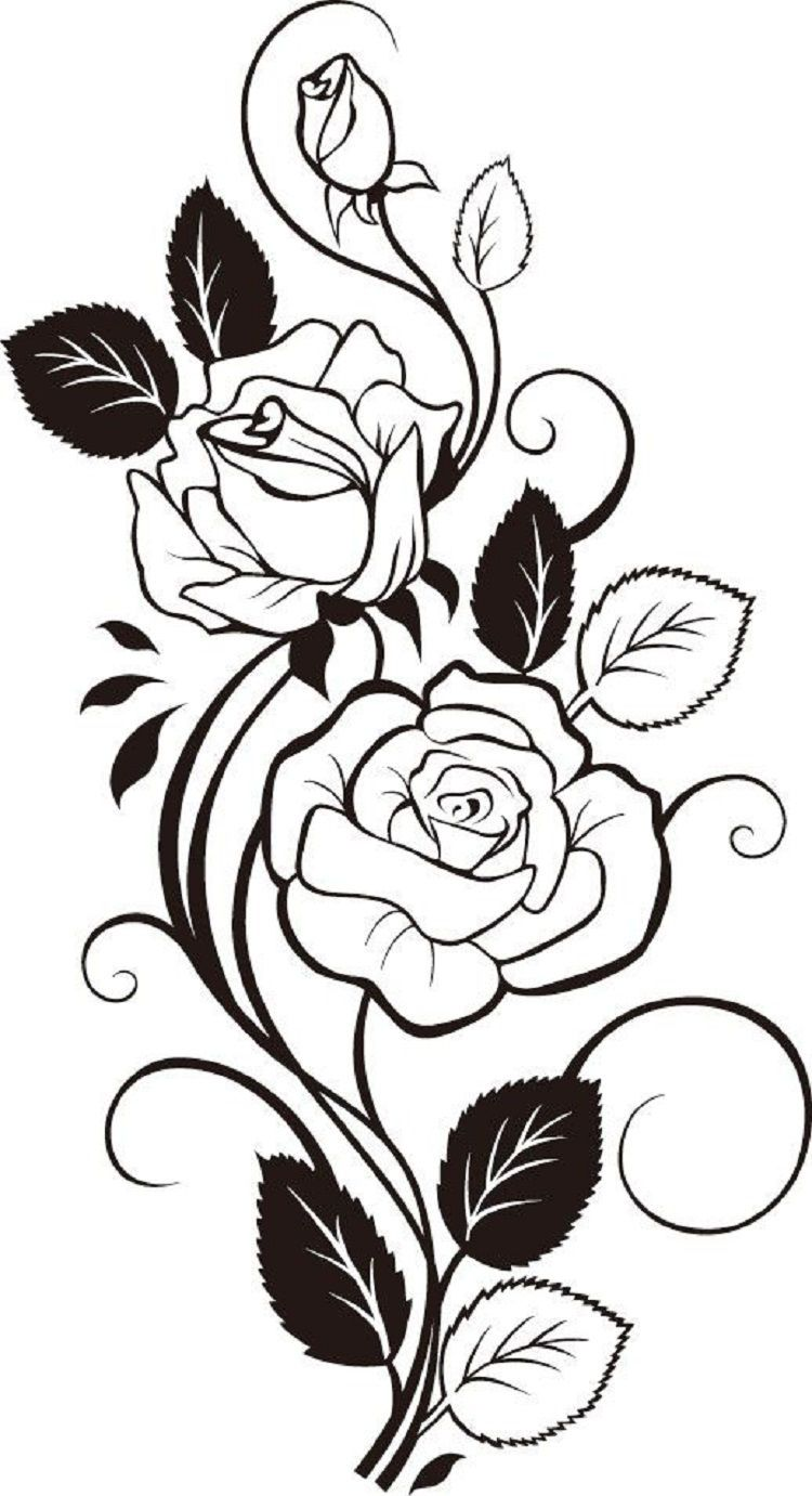 Rose Vine Coloring Pages In 2020 Flower Drawing Coloring Pages