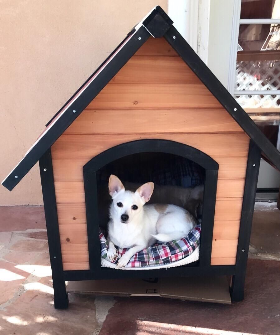 This dog house is perfect for medium and big dogs. The pet