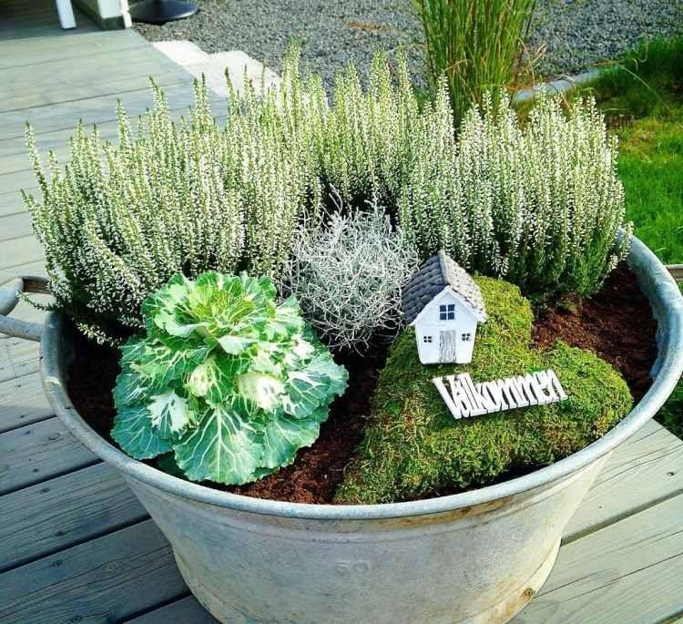 D corer le jardin et la terrasse avec des plantes d 39 automne bruy res seaux et chou - Decorer une terrasse avec des plantes ...