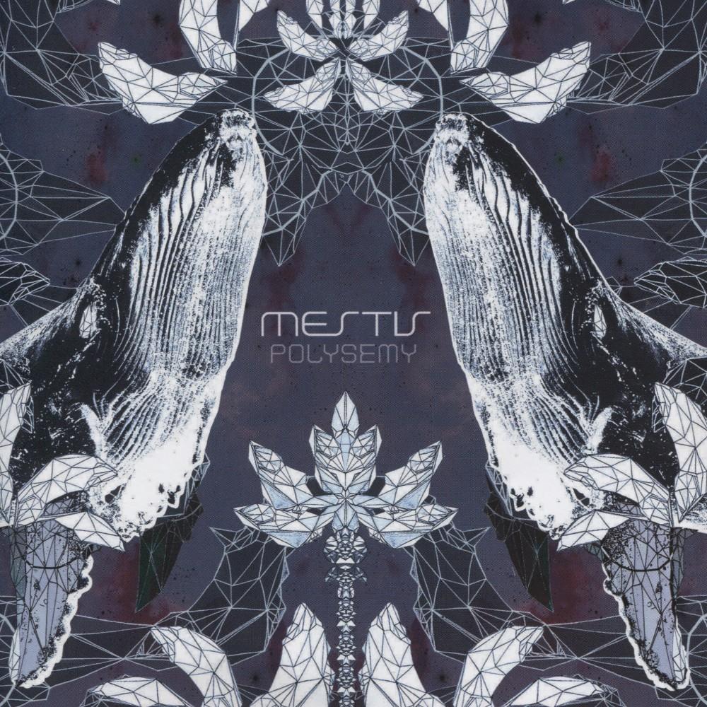 Mestis Polysemy Vinyl Music Album Art