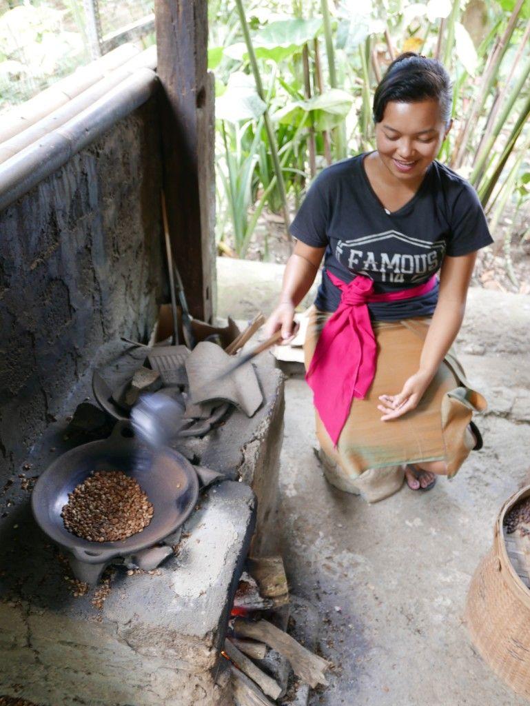 Coffee Luwak Luwus, Bali, Indonesia Nick's Wanderings