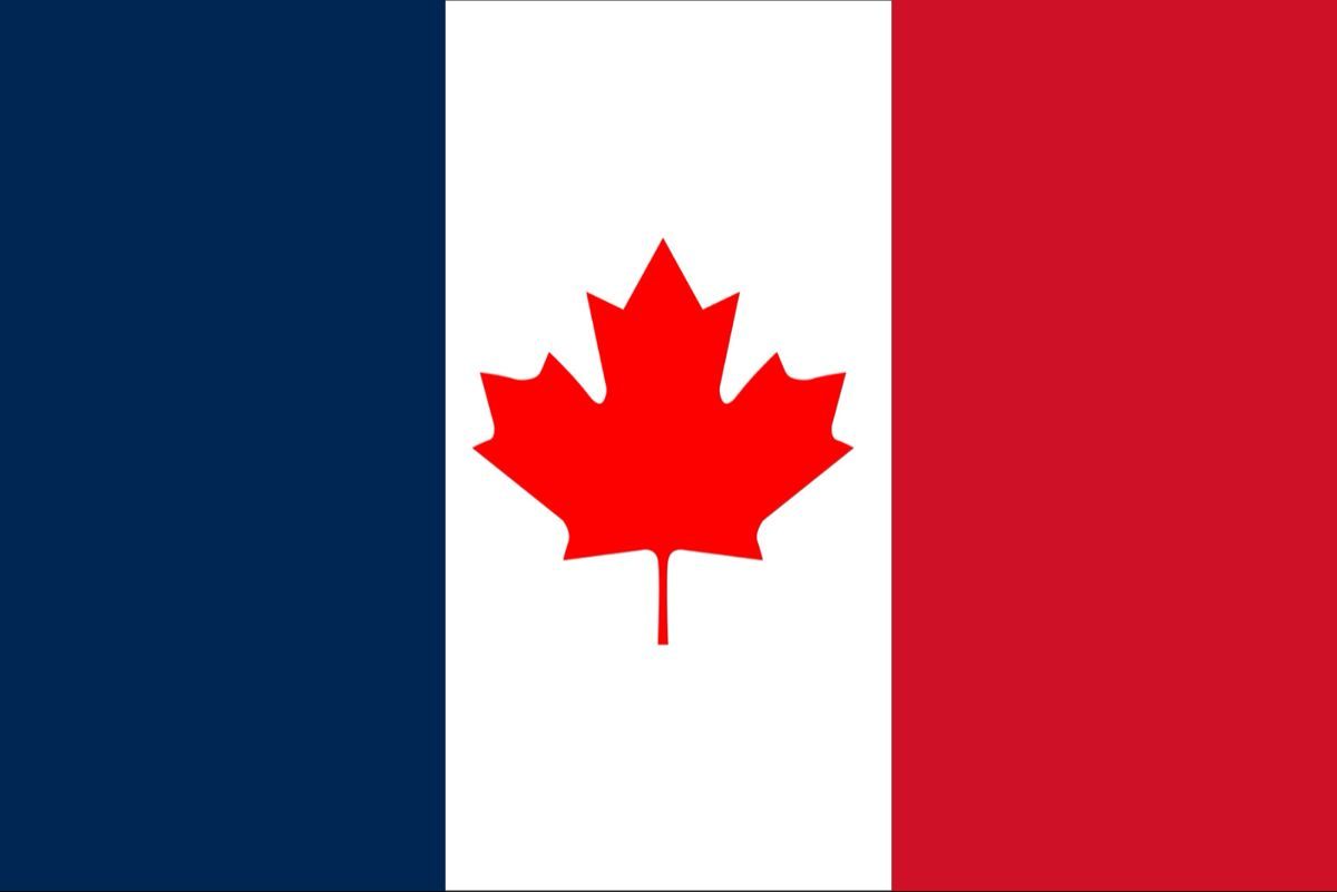 What Quebec Flag Should Be In 2020 Flag Country Flags Art