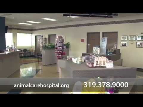 Animal Care Hospital 1146 Blairs Ferry Road Ne Cedar Rapids Ia 52402 319 378 9000 With Images Pet Care