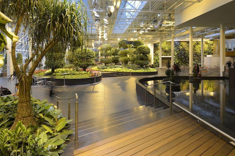 Devonian Gardens. Indoor Garden Downtown. Over 550