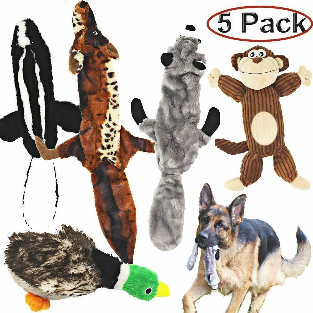 Jalousie 5 Pack Dog Squeaky Toys Three No Stuffing Toy And Two