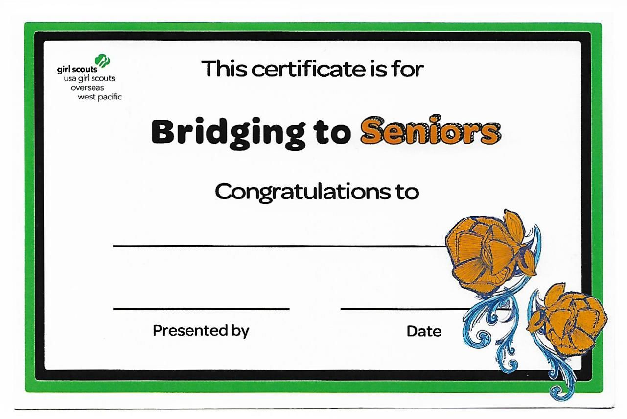 Bridging To Seniors Certificate Wpgs 204 0 25