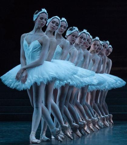 Paris Opera Ballet Le lac des cygnes | Ballet, Swan, Royal ballet