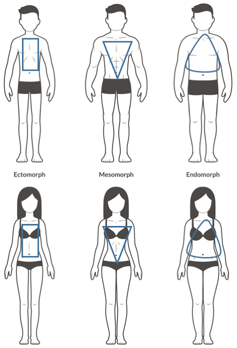 diagram showing male and female versions of the three body