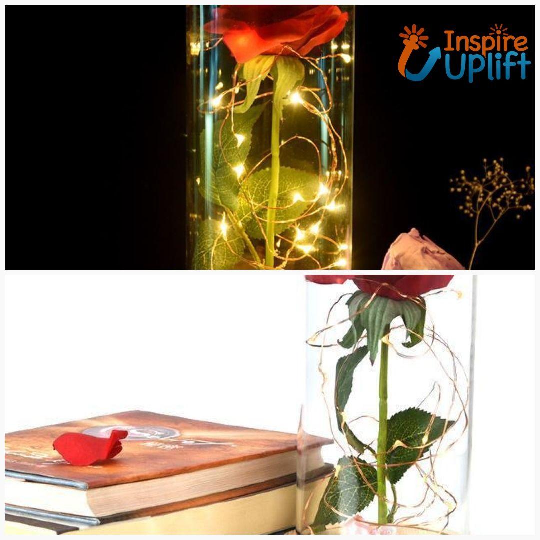 Enchanted Rose Flower Lamp New Arrivals Pinterest Enchanted