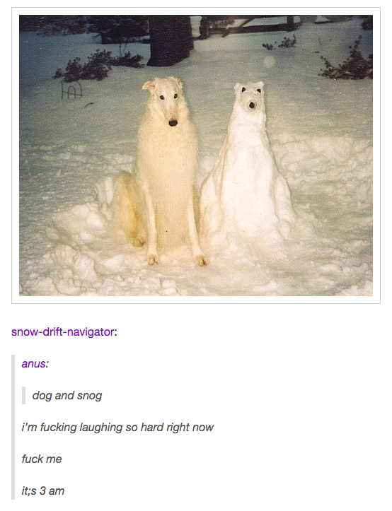 Times Tumblr Told The Truth About Dogs Dog Pictures Dog And - 45 tumblr posts about animals that are impossible not to laugh at