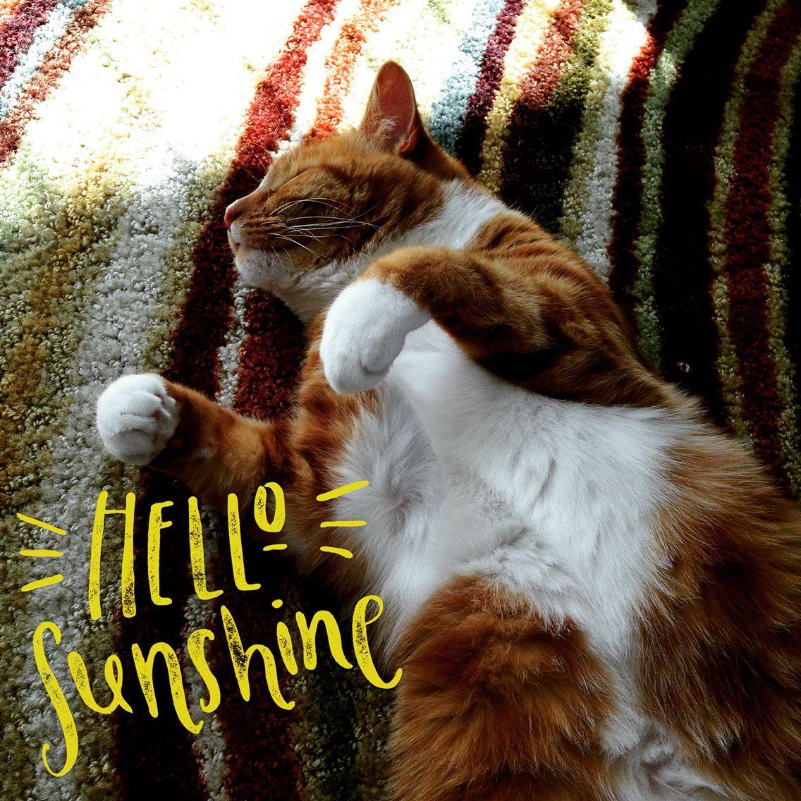 Hello Sunshine! What will U do 2day 4 self care? healthcoachlab.com Miami, Florida