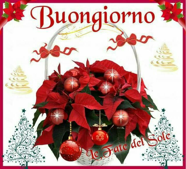 Buongiorno Natalizio Buongiorno Immagini Buongiorno E Natale