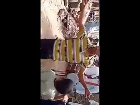 Pakistani punjabi dance | Amazing steps  2016