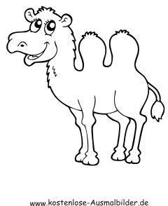 kamel ausmalbild (mit bildern) | ausmalbilder, ausmalen