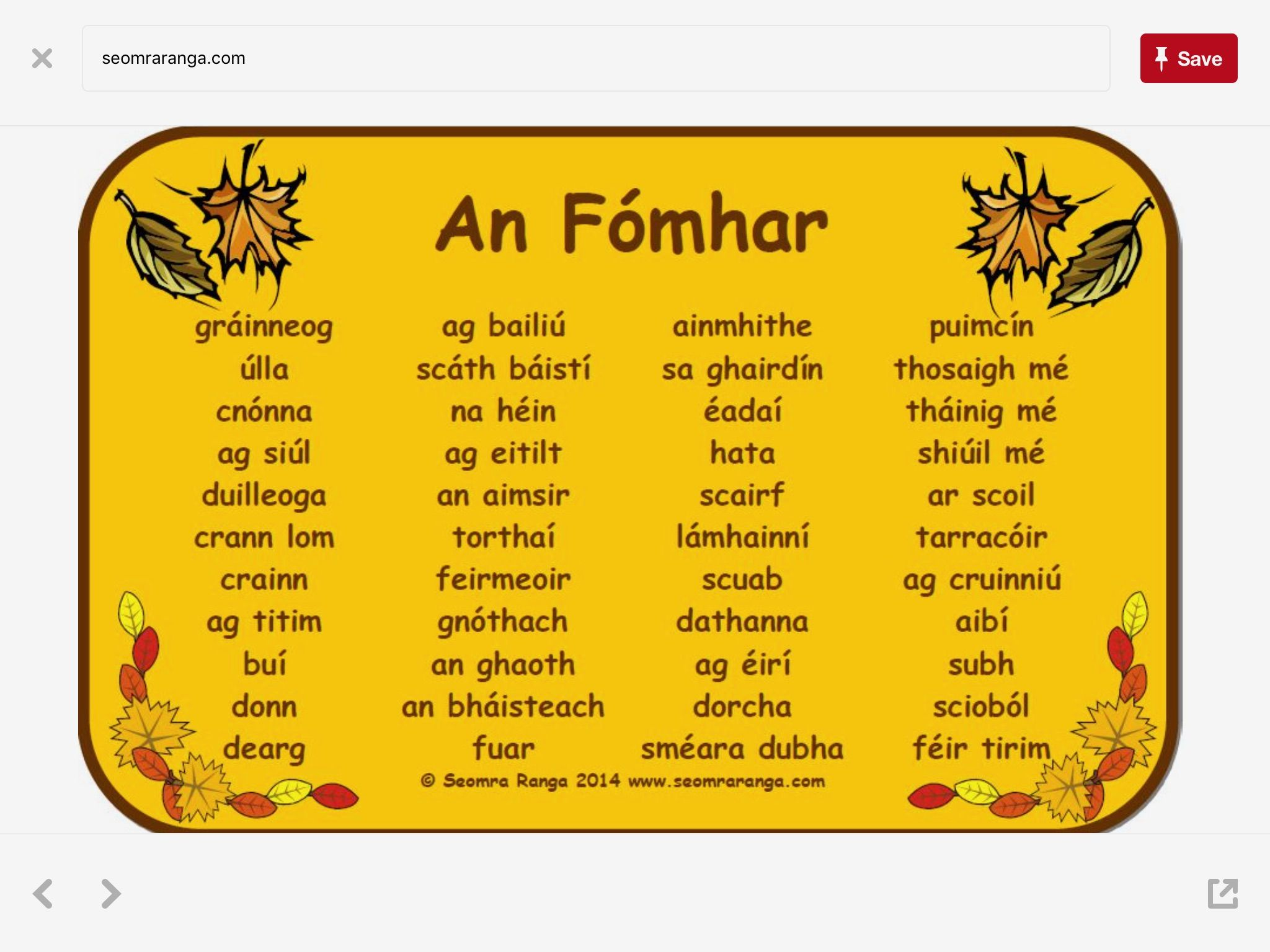 Pin By Helena Mcclafferty On Irish Language With Images