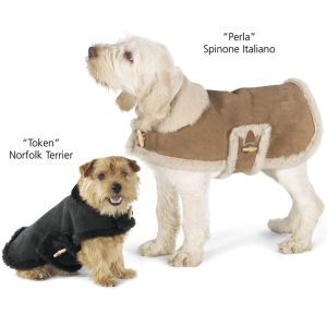 Shearling dog coat - Riley would look stunning in this ...