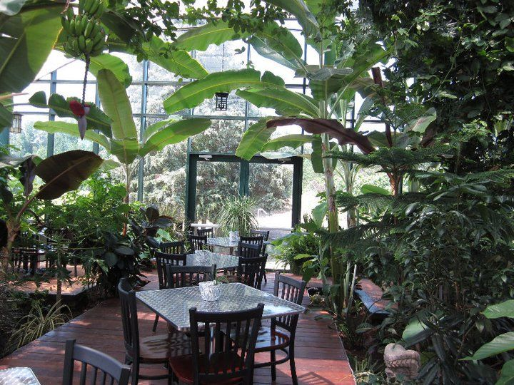 Tropical Conservatory In 2019 Virginia Wineries Conservatory Glass House House