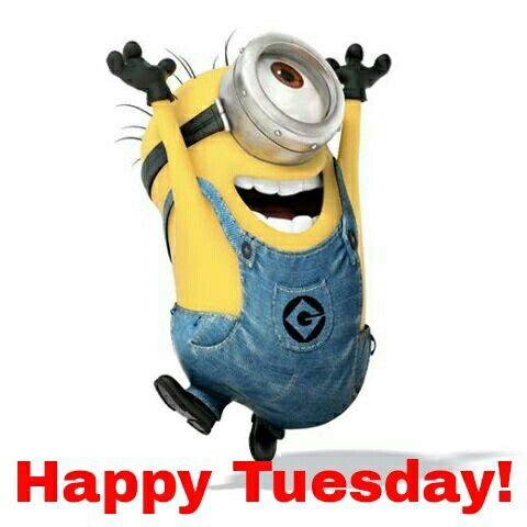 Image result for Minion Happy tuesday images funny