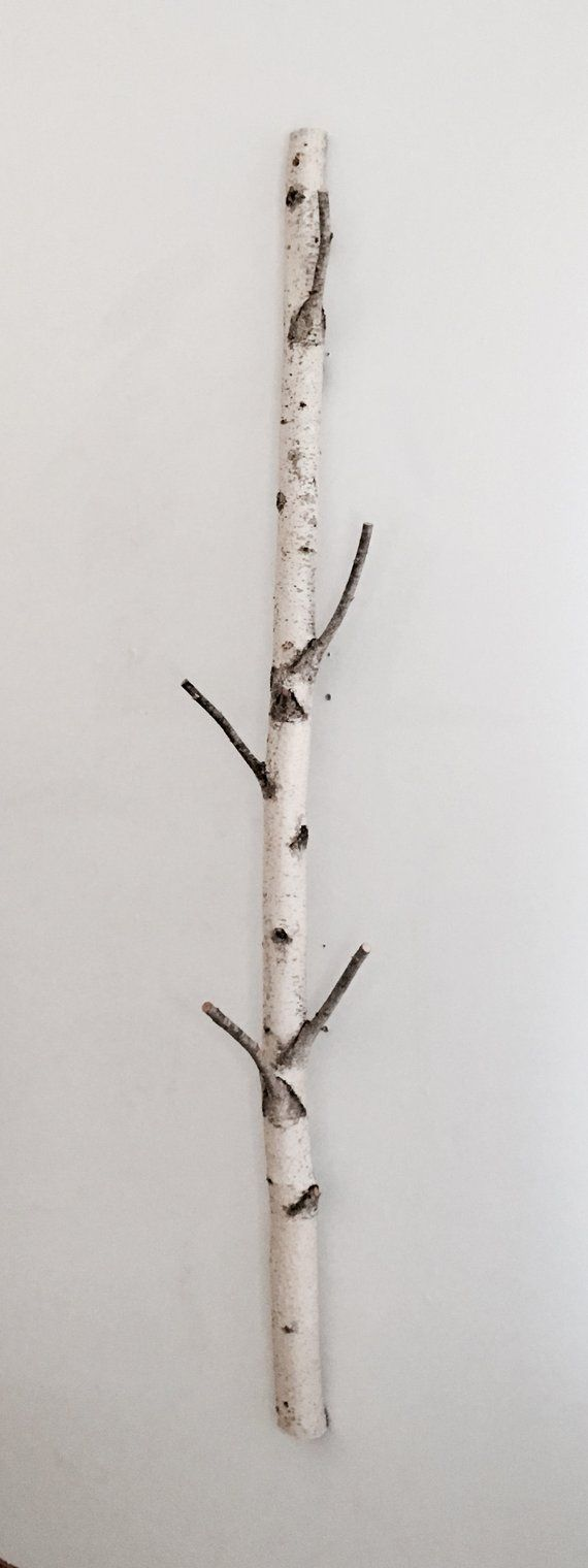 White Birch Tree Coat Rack Birch Branch Birch Pole Birch Log Trunk Coat Rack Coat Tree Wooden Hooks Modern Rustic Wall Decor White Birch Trees Tree Coat Rack Birch Branches