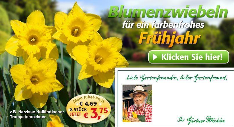 Gartenbedarf  Gartenversand & Pflanzenversand Gärtner Pötschke – hier ...