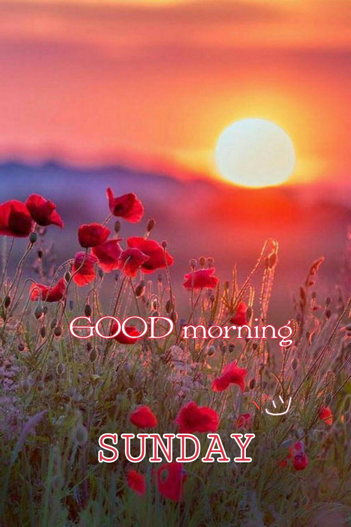 Pin By Ahmed Hatem On Good Morning Good Morning Happy Sunday Happy Sunday Quotes Good Morning Picture