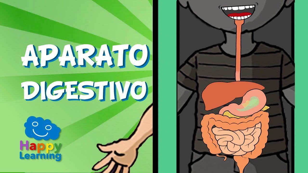 El Aparato Digestivo y la Digestión | Videos para Niños | Anatomía ...
